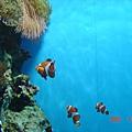 登別水族館