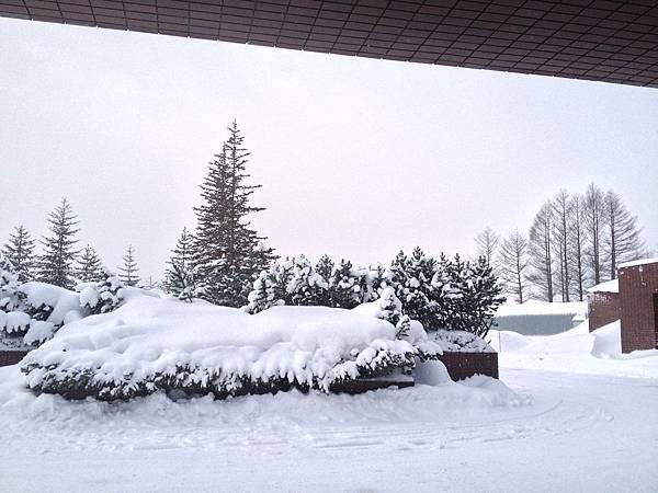 TOMAMU度假村雪景