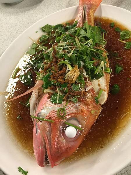 清蒸紅雞母魚