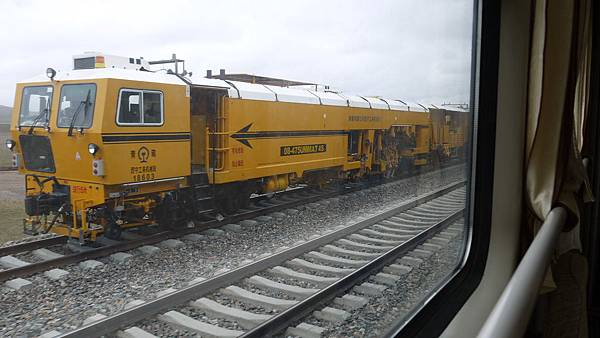 P1160493.JPG