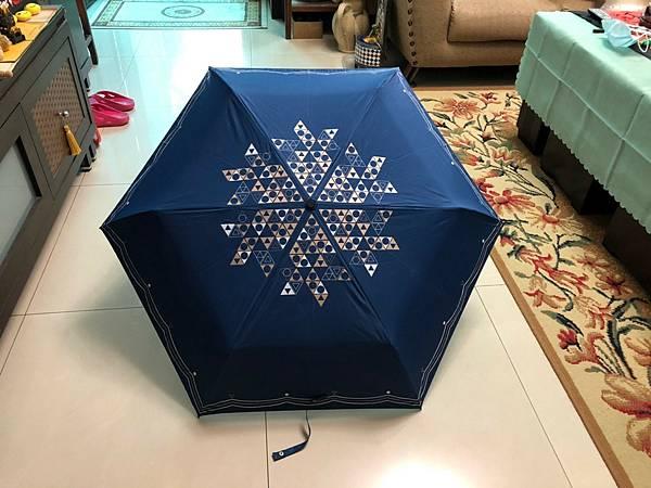 1080大洋的三折傘啊!_210610_24.jpg