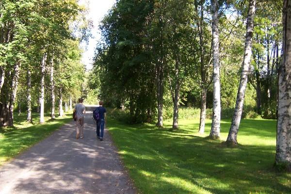 拍攝於Umea(Sweden),是The Perishers主唱Ola與鍵盤手Martin的背影,呵!