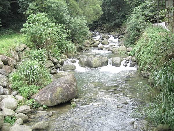 4山中小溪乾淨清涼.jpg