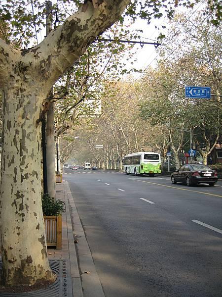 上海 032.jpg