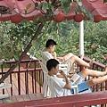 櫻花谷露營-放空中