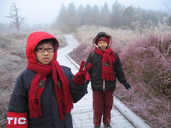 太平山(如霜似雪)