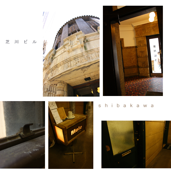 芝川5.jpg