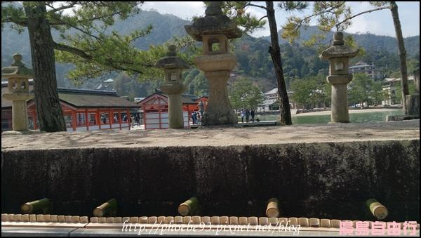310 嚴島神社.JPG