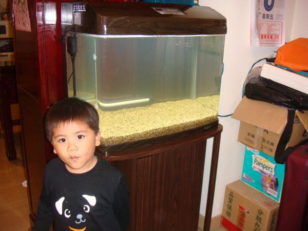 3/22新購入的魚缸