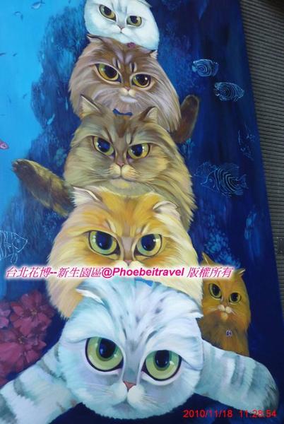 貓咪疊疊樂