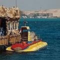 紅海玻璃潛水艇