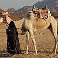 騎上駱駝,走入文化