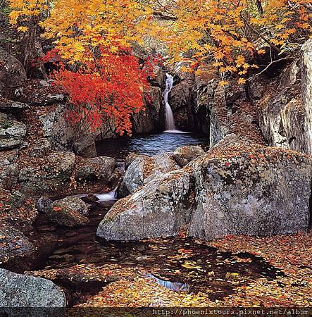 秋天的韓國
