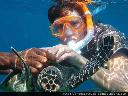 雙魚渡假村_當然,除了沙灘屋,也可選擇搭建於海上的水上屋,獨立式的空間,還能直接走進海中,景緻完全不同。在這你可以優閒的泡在無邊際泳池裡,享受令人陶醉的海浪聲,或來一趟風帆船之旅體驗駕駛的樂趣,愛潛水的人這裡的珊瑚礁與熱帶魚不容錯過,出門遊玩當然也要美美的,雙魚渡假村提供多種SPA療程,讓你身心靈完全放鬆,晚間更可安排深海垂釣,與品嚐不同主題的餐食等精彩活動,提前報名9月份出發,心動價只要57,800起~機會難得。