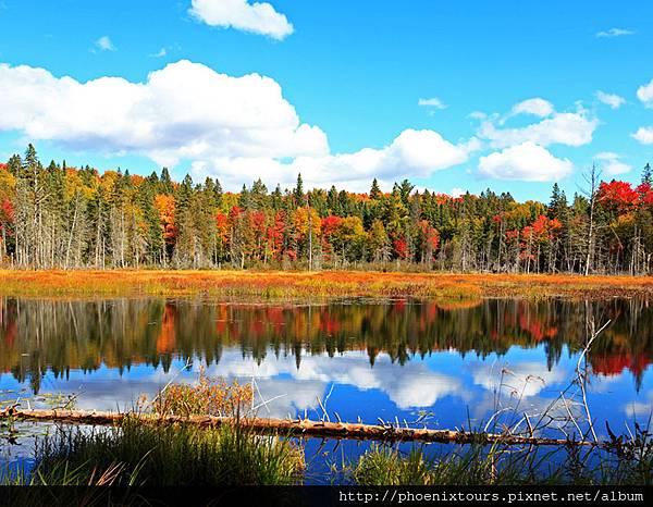加拿大-阿岡昆省立公園shutterstock_195868829