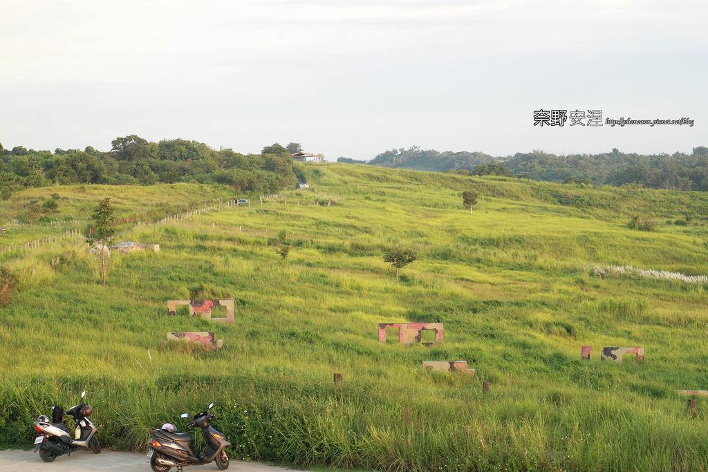 木架山探路草2拷貝.jpg