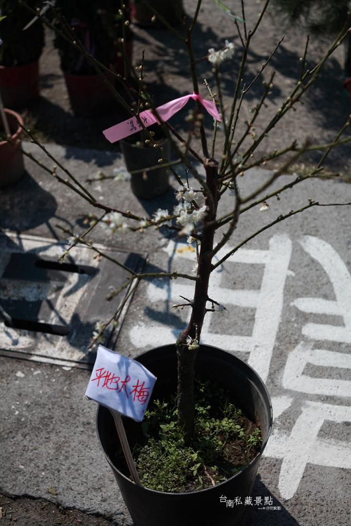 6 台南私藏景點 (2)