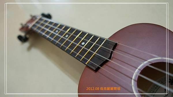DSC01446-1