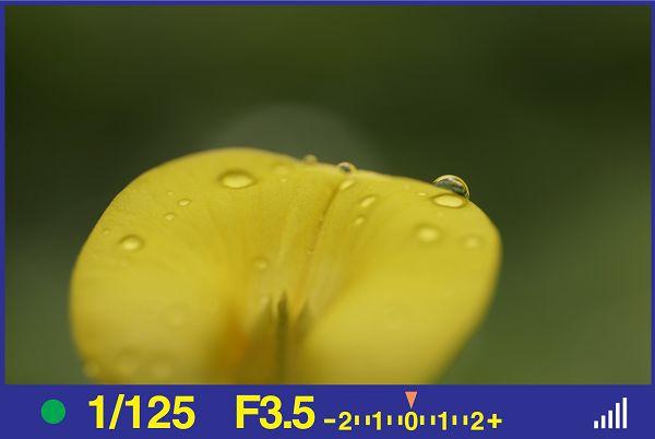 H05-18.jpg