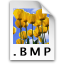 BMP5.png