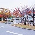 OSAKA_077_resize.jpg