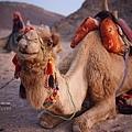 Egypt_062.jpg