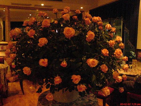 跟貴婦約在古典玫瑰園