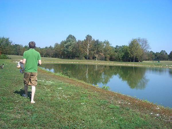 到湖邊養鴨