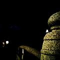 20100316-32 試照夜景之陰森森神社橋