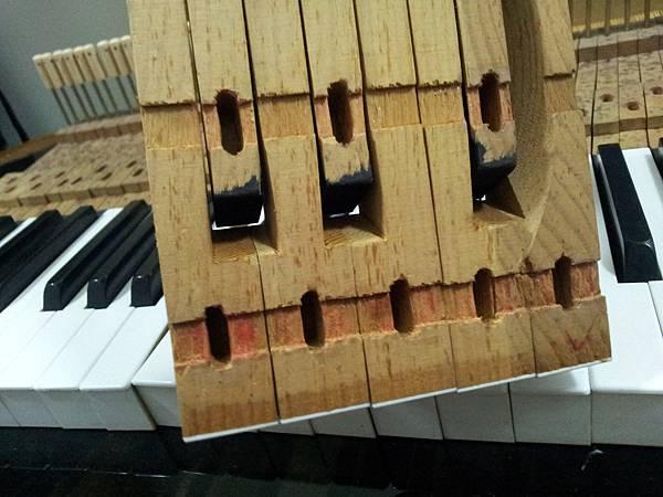 鋼琴的天敵(衣蛾大量繁殖)07