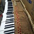 鋼琴的天敵(衣蛾大量繁殖)08