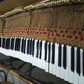 鋼琴的天敵(衣蛾大量繁殖)09
