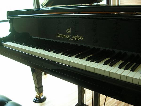 高大哥(SK-5)13