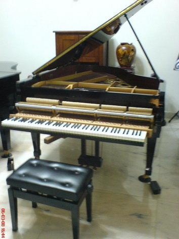 平台鋼琴打弦系統內部.jpg