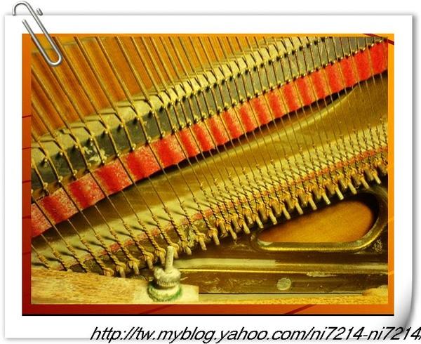 生鏽的琴弦.jpg