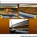 查看鋼琴型號及編號_nEO_IMG.jpg