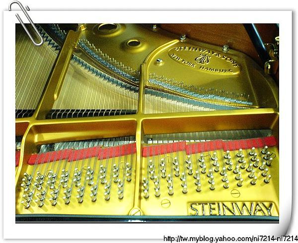 鋼琴琴弦_nEO_IMG.jpg