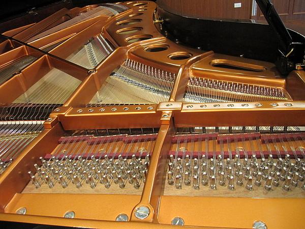 Bosendorfer 280 單弦系統 B 13.JPG