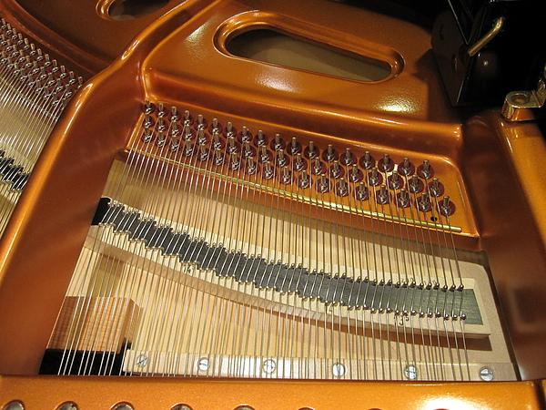 Bosendorfer 280 單弦系統 A 10.JPG