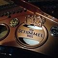 SCHIMMEL B.JPG