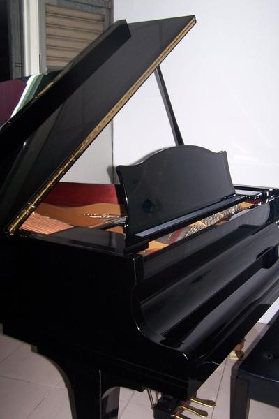 陽光鋼琴公司DIAPASON1.JPG