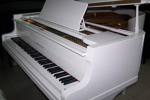 陽光鋼琴公司2.JPG