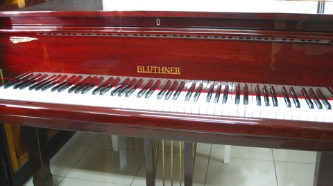 Bluethner 4.JPG