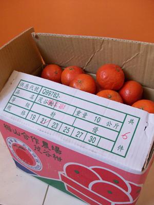 佛利蒙橘子.jpg