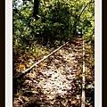 hike_22.jpg