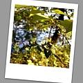 hike_33.jpg