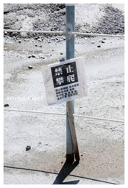 IMG_9218_副本.jpg