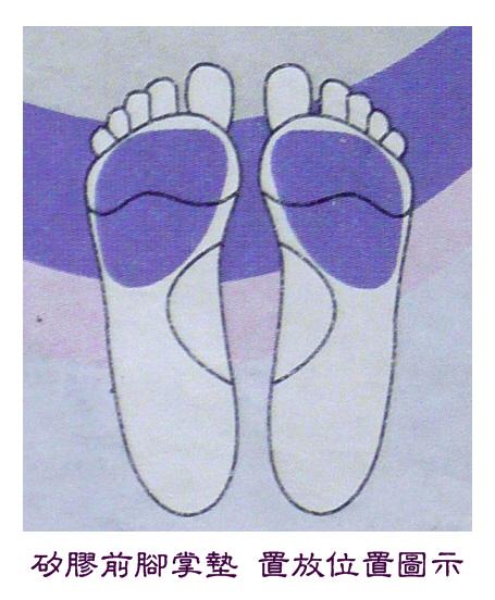 矽膠前腳掌墊置放位置.jpg