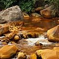 小溪中金黃色石頭