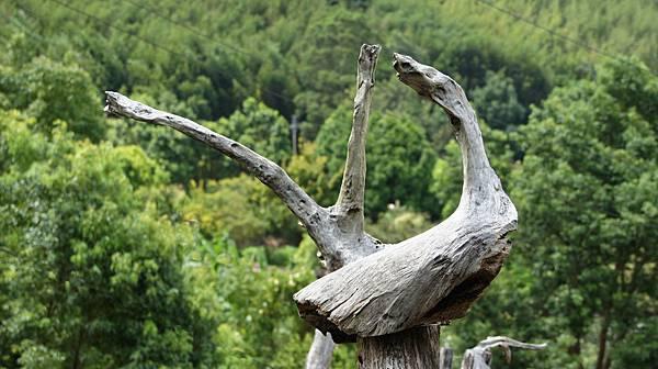 漂流木裝置藝術